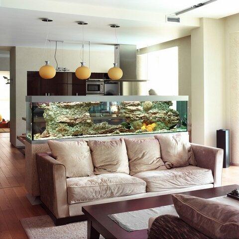 Кухня гостиная с разделителем аквариумом в помещении 30 квадратов фото дизайн