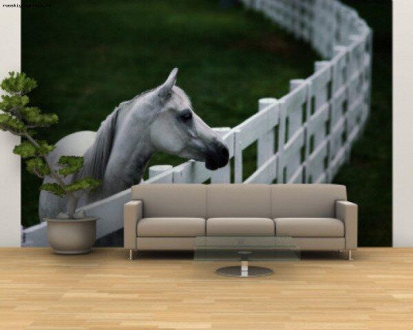 Фотообои с 3D эффектом можно использовать в любых помещениях