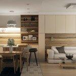 Гостиная совмещенная с кухней, фото дизайна и советы