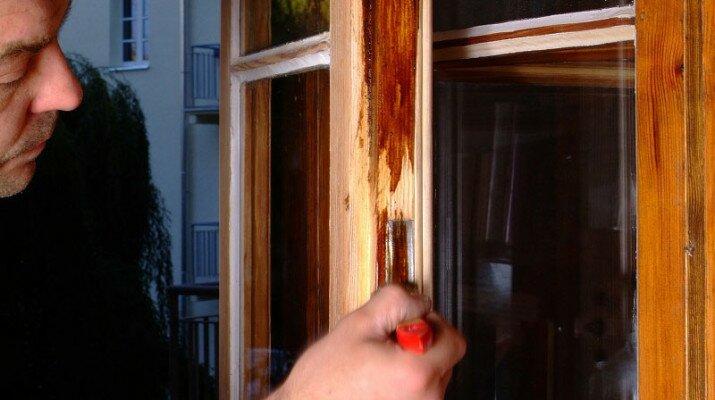 Стоит ли использовать деревянные окна